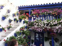 Patios de Córdoba1