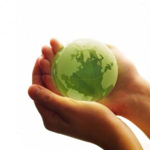 sostenibilidad blog