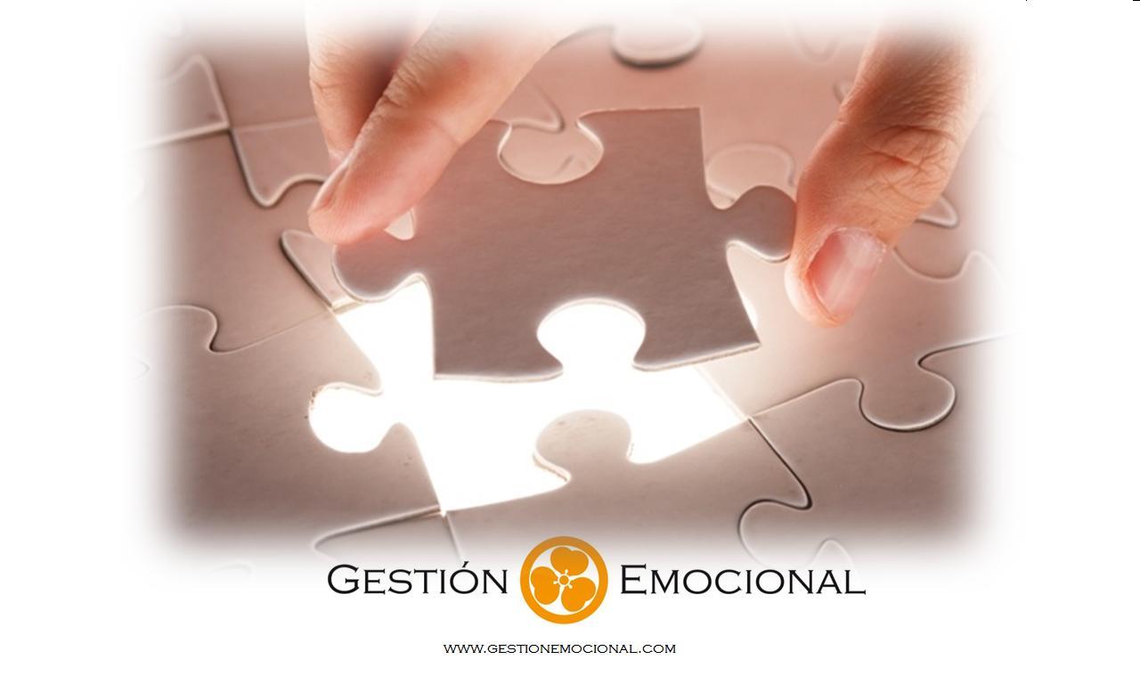 puzzle logo web