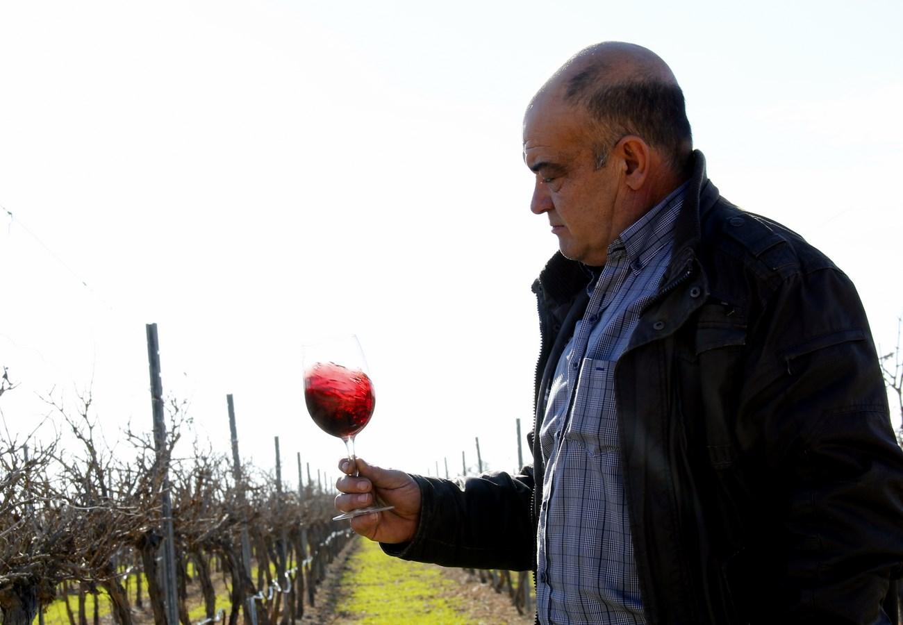Vinos Cambronero. Francisco con copa oxigenando el vino (Copiar)
