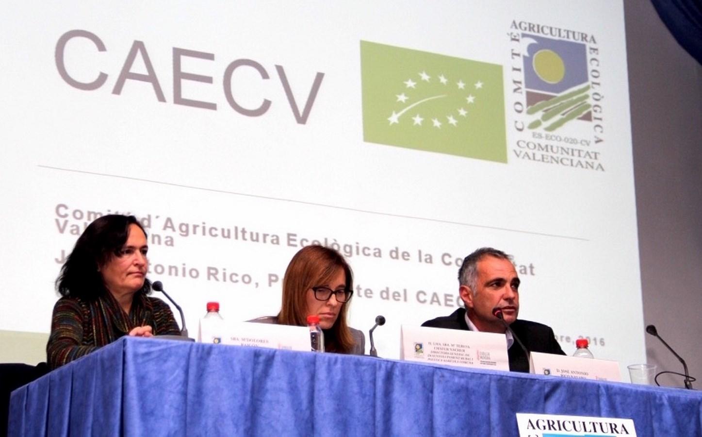Maite Cháfer, Dolores Raigón, José Antonio Rico